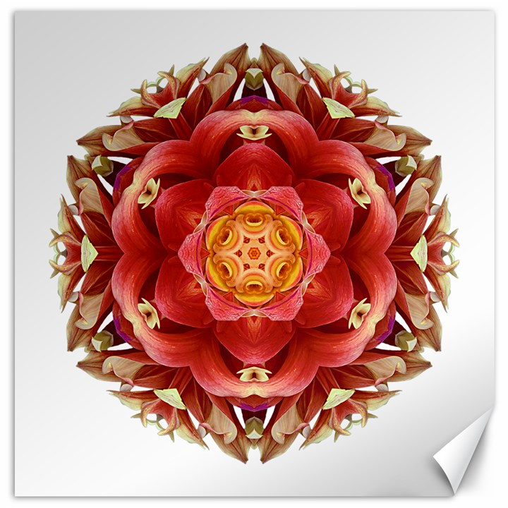 Red And Yellow Dahlia III Flower Mandala Canvas 12  x 12