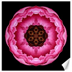 Pink Peony I Flower Mandala Canvas 20  X 20   by flowermandalas