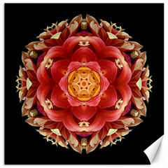 Red And Yellow Dahlia Iii Flower Mandala Canvas 12  X 12   by flowermandalas