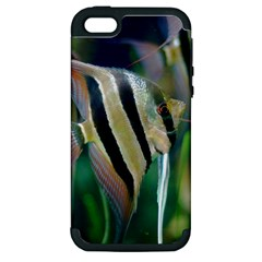 Angelfish 1 Apple Iphone 5 Hardshell Case (pc+silicone) by trendistuff