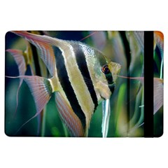 Angelfish 1 Ipad Air Flip by trendistuff