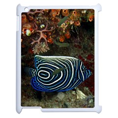 Angelfish 2 Apple Ipad 2 Case (white) by trendistuff