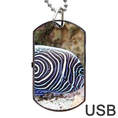 Angelfish 3 Dog Tag Usb Flash (one Side) by trendistuff