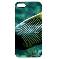 Angelfish 4 Apple Iphone 5 Hardshell Case With Stand by trendistuff