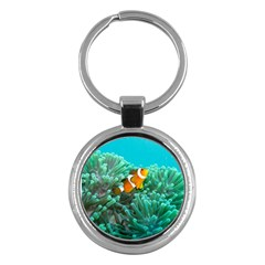Clownfish 3 Key Chains (round)  by trendistuff