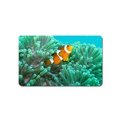 Clownfish 3 Magnet (name Card) by trendistuff
