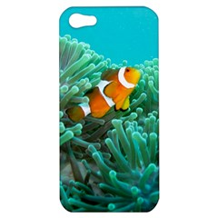 Clownfish 3 Apple Iphone 5 Hardshell Case by trendistuff