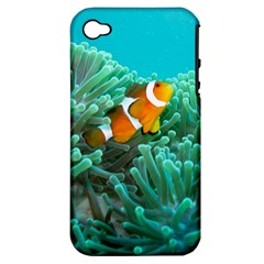 Clownfish 3 Apple Iphone 4/4s Hardshell Case (pc+silicone) by trendistuff