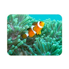 Clownfish 3 Double Sided Flano Blanket (mini)  by trendistuff