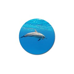 Dolphin 3 Golf Ball Marker (10 Pack) by trendistuff