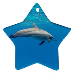Dolphin 3 Star Ornament (two Sides) by trendistuff