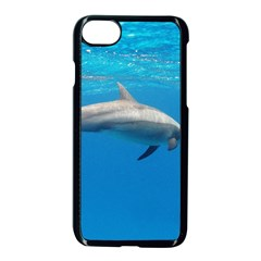 Dolphin 3 Apple Iphone 8 Seamless Case (black) by trendistuff