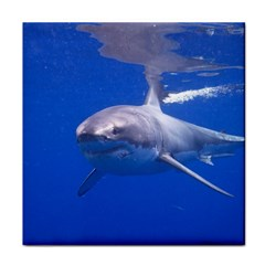 Great White Shark 4 Face Towel by trendistuff