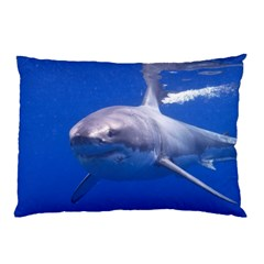 Great White Shark 4 Pillow Case by trendistuff