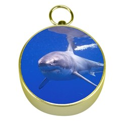 Great White Shark 4 Gold Compasses by trendistuff