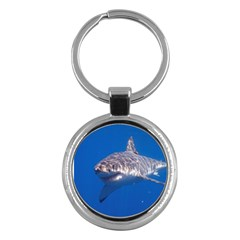 Great White Shark 5 Key Chains (round)  by trendistuff