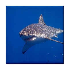 Great White Shark 5 Face Towel by trendistuff
