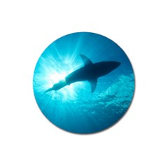 Great White Shark 6 Magnet 3  (round) by trendistuff
