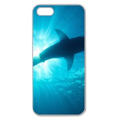 Great White Shark 6 Apple Seamless Iphone 5 Case (clear) by trendistuff