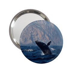 Humpback 1 2 25  Handbag Mirrors by trendistuff