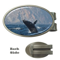 Humpback 1 Money Clips (oval)  by trendistuff