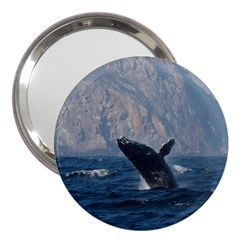 Humpback 1 3  Handbag Mirrors by trendistuff