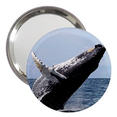 Humpback 2 3  Handbag Mirrors by trendistuff