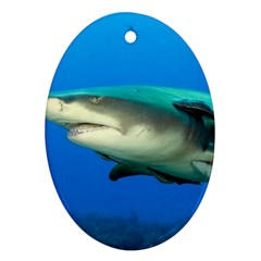 Lemon Shark Ornament (oval) by trendistuff