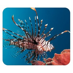 Lionfish 1 Double Sided Flano Blanket (small)  by trendistuff