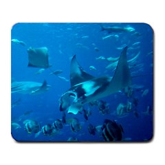 Manta Ray 2 Large Mousepads by trendistuff
