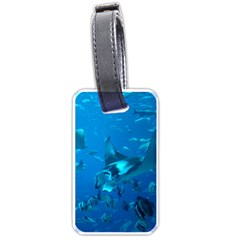 Manta Ray 2 Luggage Tags (two Sides) by trendistuff