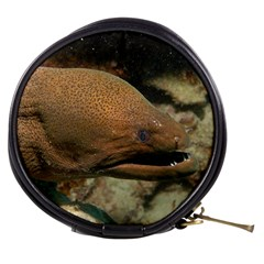 Moray Eel 1 Mini Makeup Bags by trendistuff