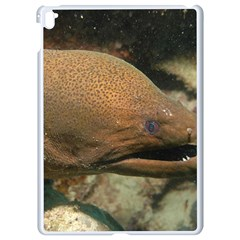 Moray Eel 1 Apple Ipad Pro 9 7   White Seamless Case by trendistuff