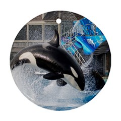 Orca 1 Round Ornament (two Sides) by trendistuff