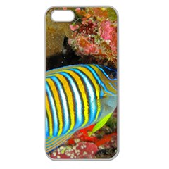 Regal Angelfish Apple Seamless Iphone 5 Case (clear) by trendistuff