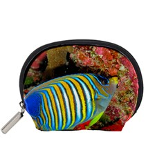 Regal Angelfish Accessory Pouches (small)  by trendistuff