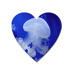 Spotted Jellyfish Heart Magnet by trendistuff