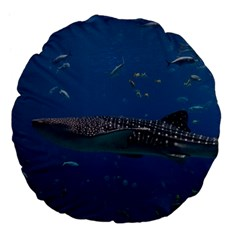 Whale Shark 1 Large 18  Premium Flano Round Cushions by trendistuff