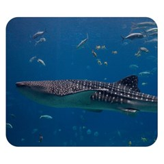 Whale Shark 1 Double Sided Flano Blanket (small)  by trendistuff