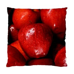 Apples 1 Standard Cushion Case (two Sides)