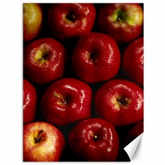 Apples 2 Canvas 36  X 48   by trendistuff