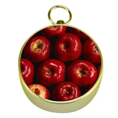 Apples 2 Gold Compasses by trendistuff