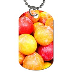Apricots 1 Dog Tag (one Side) by trendistuff