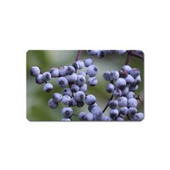Blueberries 2 Magnet (name Card) by trendistuff