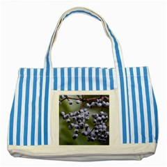 Blueberries 2 Striped Blue Tote Bag by trendistuff