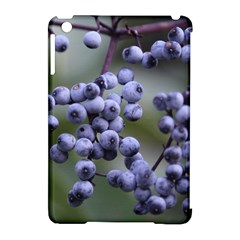 Blueberries 2 Apple Ipad Mini Hardshell Case (compatible With Smart Cover) by trendistuff