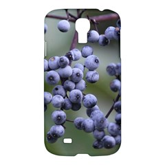 Blueberries 2 Samsung Galaxy S4 I9500/i9505 Hardshell Case by trendistuff