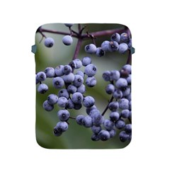 Blueberries 2 Apple Ipad 2/3/4 Protective Soft Cases by trendistuff
