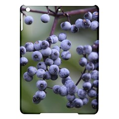 Blueberries 2 Ipad Air Hardshell Cases by trendistuff