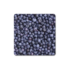 Blueberries 3 Square Magnet by trendistuff
